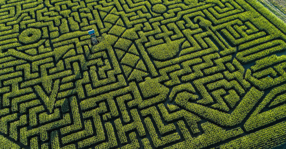 common data challenges: this is a corn maze.